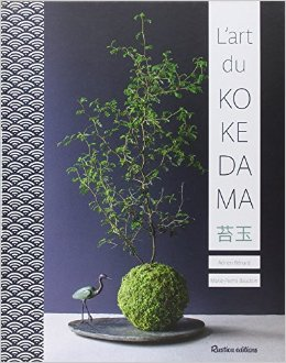 l 39 art nippon s 39 invite chez vous avec les kokedama les bonnes id es maison. Black Bedroom Furniture Sets. Home Design Ideas