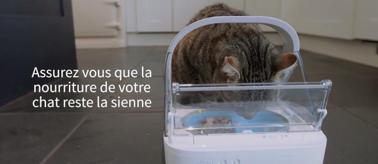 Gamelle pour chat avec identification électronique