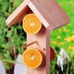 Mangeoire verticale pour oiseaux
