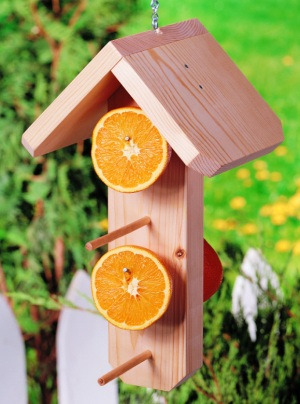 3 id es de mangeoires oiseaux fabriquer soi m me les bonnes id es jardin. Black Bedroom Furniture Sets. Home Design Ideas