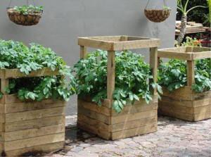 Une potato box à différentes hauteurs