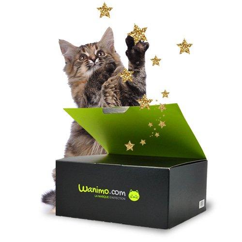 Wanibox pour chats